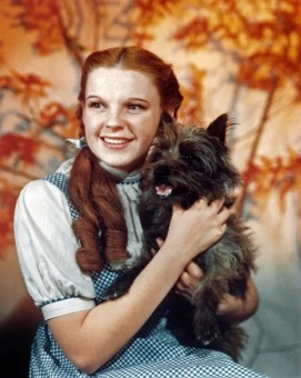 Judy Garland as Dorothy Gale in THE WIZARD OF OZ, 1939.